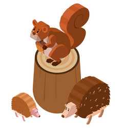 Squirrel and hedgehogs in 3d design vector