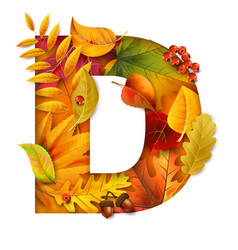 Autumn stylized alphabet with foliage letter d vector