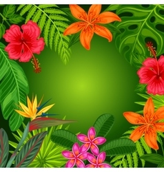 Background with stylized tropical plants leaves vector