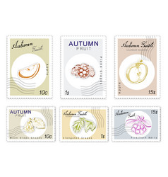 Post stamps set of autumn fruits with paper cut ar vector