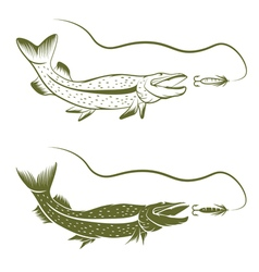 Set of pike and lure design template vector