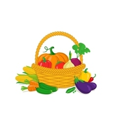 Vegetables in a basket vector image