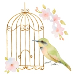 Watercolor bird cage and flowers vector image