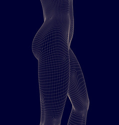 Wireframe a slender female waist side view vector
