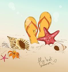 with seashells starfish and flip flops vector image