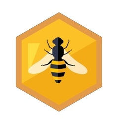 Hexagon Shape Honeycomb With Bee Insect In Center vector image vector image