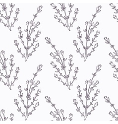 Hand drawn thyme branch outline seamless pattern vector image vector image