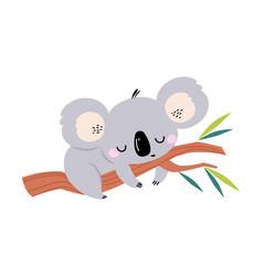 Adorable koala sleeping on tree branch lovely vector