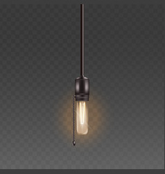 electric light bulb or glass lamp on cord with vector image