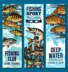 fishing sport club banner set with swimming fish vector image