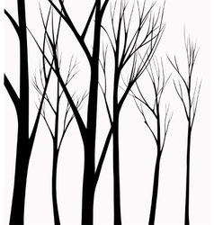 group silhouettes trees vector image