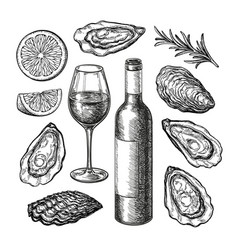 ink sketch set wine and oysters vector image