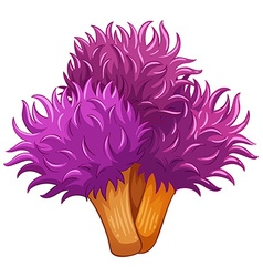Single coral flower in purple color vector