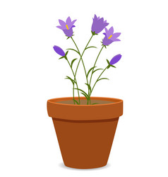 spring bluebell flowers background vector image