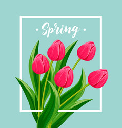 Spring greeting card with blooming tulip vector
