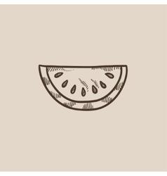 Melon sketch icon vector image