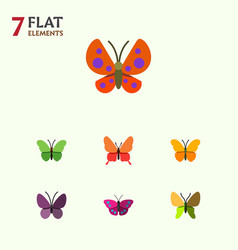 Flat butterfly set of moth violet wing butterfly vector