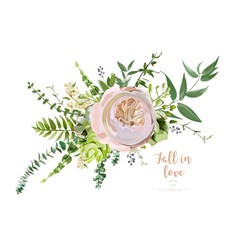 bouquet element pink garden rose green vector image