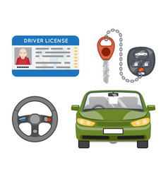 car driver license isolated icons set vector image