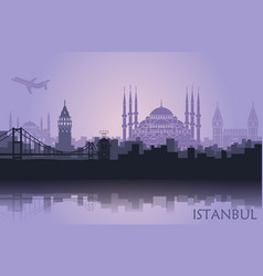 landscape of the turkish city of istanbul vector image