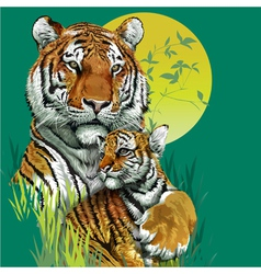 Tiger family in jungle vector image