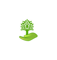 tree care logo inspiration isolated on white vector image