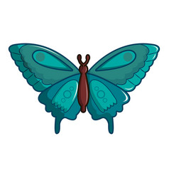 butterfly morpho anaxibia icon cartoon style vector image