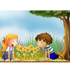 Kids watching the pots of sunflower vector image vector image