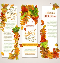 set of vertical autumn banners vector image