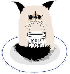 grumpy cat with yoghurt jar vector image