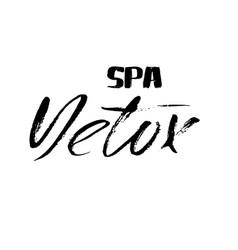hand lettered inscription detox spa hand brushed vector image