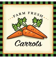 Farm Fresh Carrots vector image