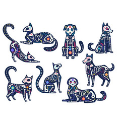 day animals dia de los muertos cats and dogs vector image