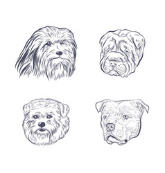Dog heads collection sketch vector