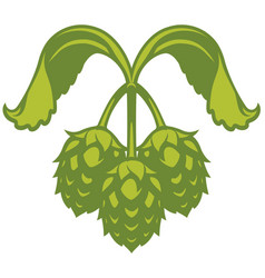 hops visual graphic icon or logo for beer vector image