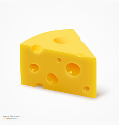 Triangular piece of cheese vector