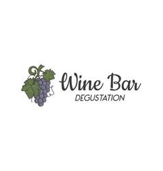 wine bar degustation logo template wine grape vector image