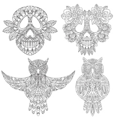 Owl and skull sketchs vector image