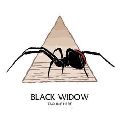 Black widow spider logo design vector