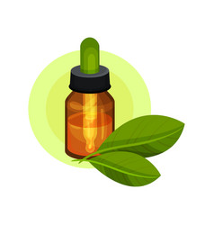 essential oil in small brown glass bottle with vector image