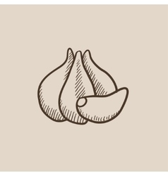 Garlic sketch icon vector image