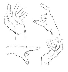 Hand drawn human hands isolated vector
