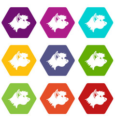 terrier dog icon set color hexahedron vector image