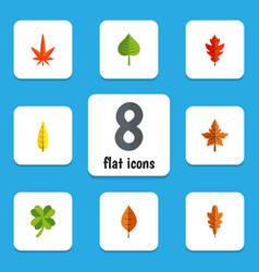 flat icon leaves set of linden foliage leafage vector image