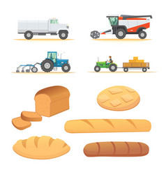 set autumn harvesting farm agricultural machines vector image