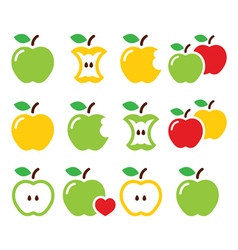 Green and yellow apple apple core bitten half vector image
