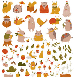 big set with forest animals and collection vector image