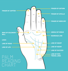 Palm reading chart palmistry map of the palms vector