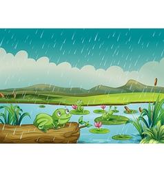 Three frogs enjoying the raindrops vector image