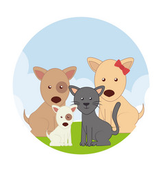 cute pets characters icon vector image
